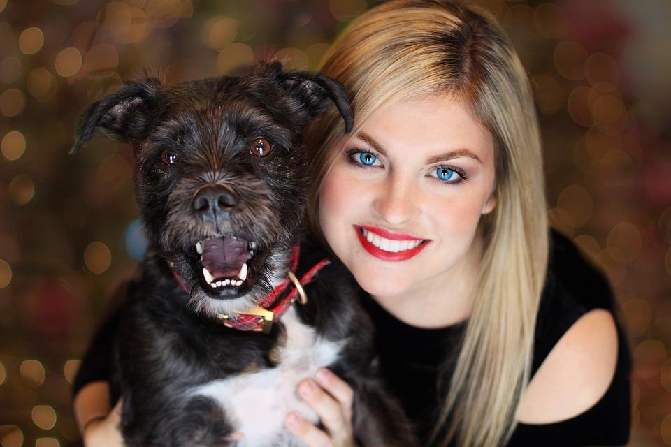 hiring pet sitter