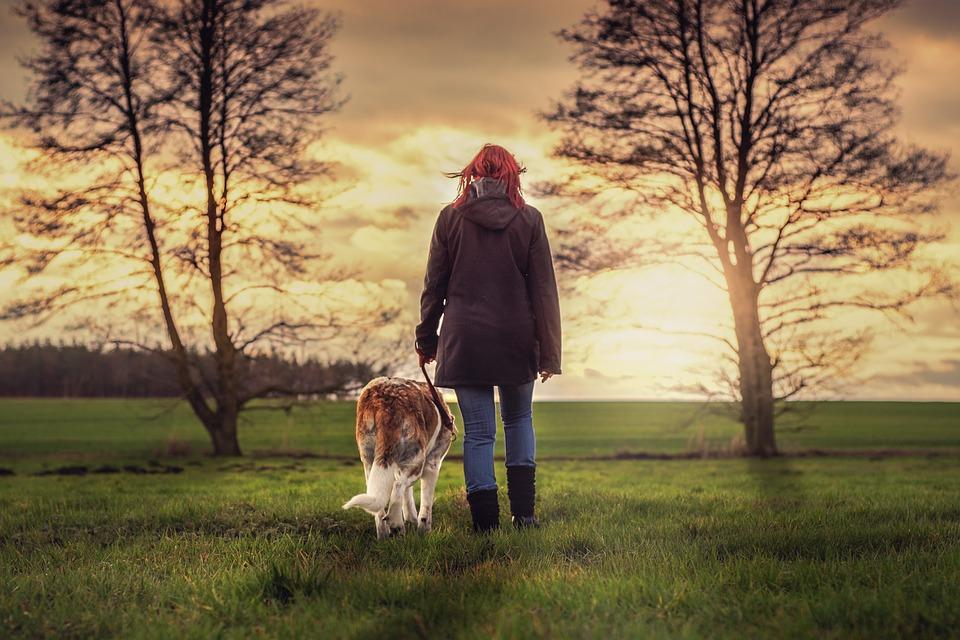 dog walking